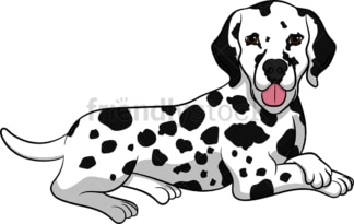 Lying down dalmatian dog. PNG - JPG and vector EPS (infinitely scalable). Image isolated on transparent background.