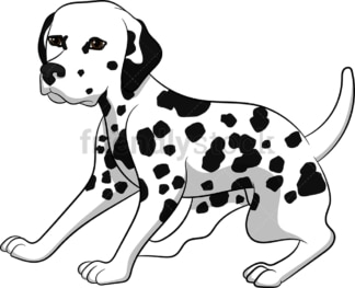 Alerted dalmatian dog. PNG - JPG and vector EPS (infinitely scalable). Image isolated on transparent background.