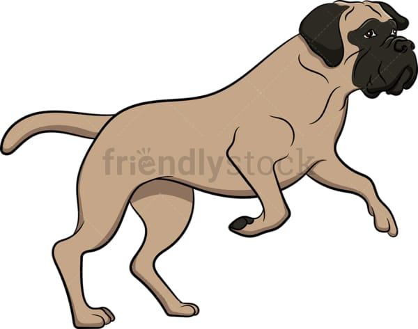 Jumping bullmastiff dog. PNG - JPG and vector EPS (infinitely scalable). Image isolated on transparent background.