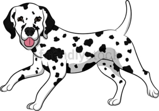 Playful dalmatian dog running. PNG - JPG and vector EPS (infinitely scalable). Image isolated on transparent background.