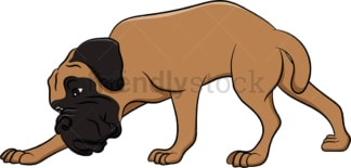 Sniffing bullmastiff dog. PNG - JPG and vector EPS (infinitely scalable). Image isolated on transparent background.