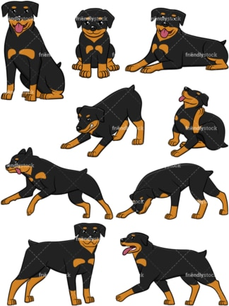 Rottweiler collection. PNG - JPG and vector EPS file formats (infinitely scalable).