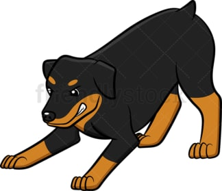 Angry rottweiler growling. PNG - JPG and vector EPS (infinitely scalable).