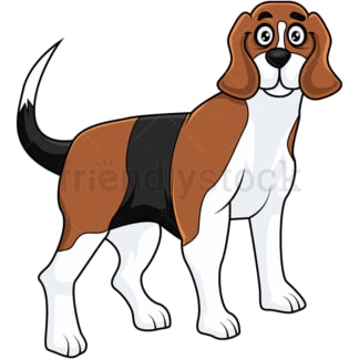 Cute beagle dog standing on all fours. PNG - JPG and vector EPS (infinitely scalable).
