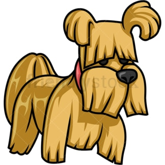Adorable small hairy dog. PNG - JPG and vector EPS (infinitely scalable).