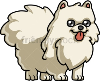 Playful pomeranian dog. PNG - JPG and vector EPS (infinitely scalable).