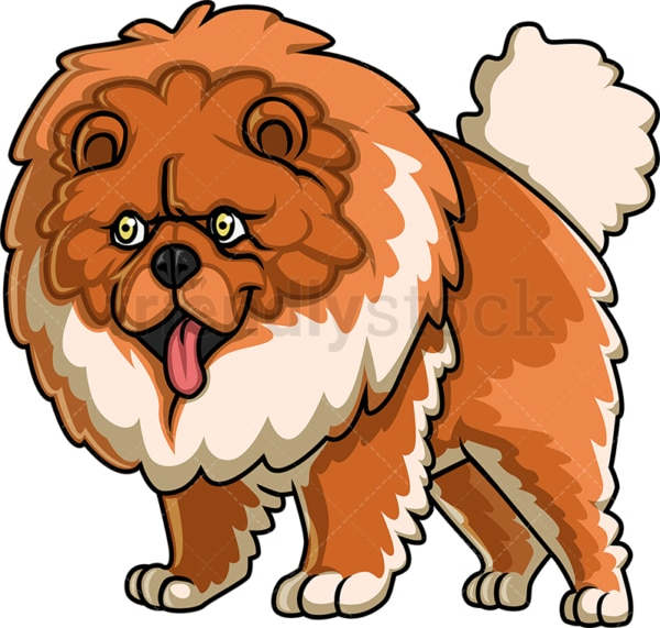 Huge chow chow dog. PNG - JPG and vector EPS (infinitely scalable).