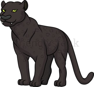 Wild black panther. PNG - JPG and vector EPS (infinitely scalable).