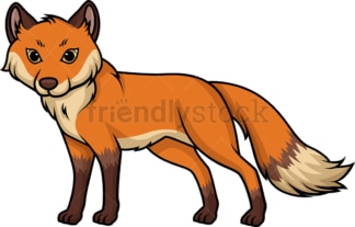 Wild fox. PNG - JPG and vector EPS (infinitely scalable).