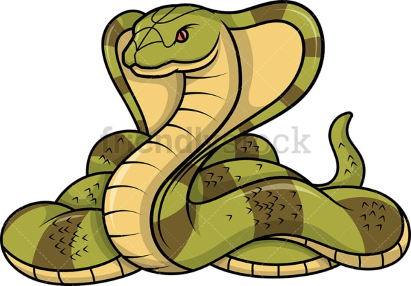 Cobra snake. PNG - JPG and vector EPS (infinitely scalable).
