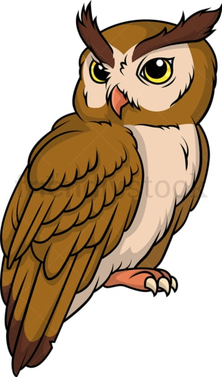 Wild owl. PNG - JPG and vector EPS (infinitely scalable).