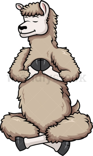 Llama doing yoga. PNG - JPG and vector EPS (infinitely scalable).