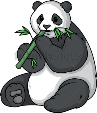 Panda bear eating bamboo. PNG - JPG and vector EPS (infinitely scalable).