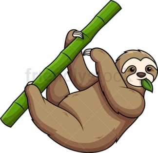 Sloth eating leaves. PNG - JPG and vector EPS (infinitely scalable).