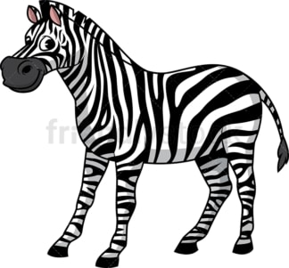 Wild zebra. PNG - JPG and vector EPS (infinitely scalable).