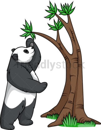 Panda bear reaching tree branch. PNG - JPG and vector EPS (infinitely scalable).