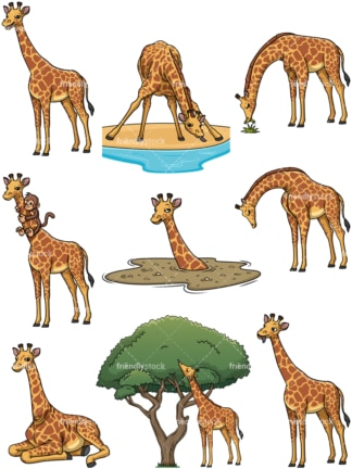 Wild giraffes. PNG - JPG and vector EPS file formats (infinitely scalable).