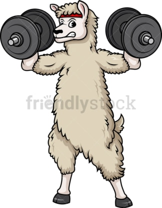 Llama lifting dumbbells. PNG - JPG and vector EPS (infinitely scalable).