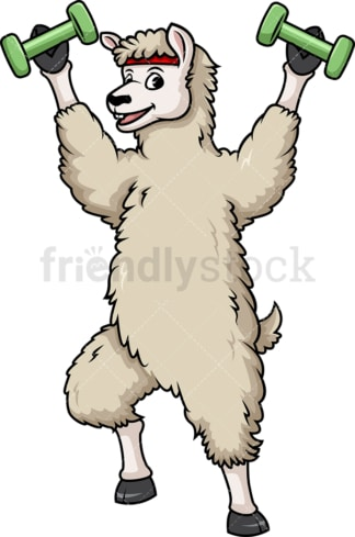 Llama lifting weights. PNG - JPG and vector EPS (infinitely scalable).