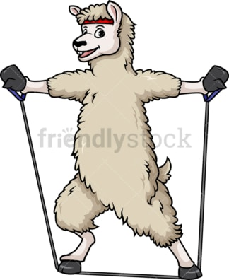 Llama working out with resistance bands. PNG - JPG and vector EPS (infinitely scalable).