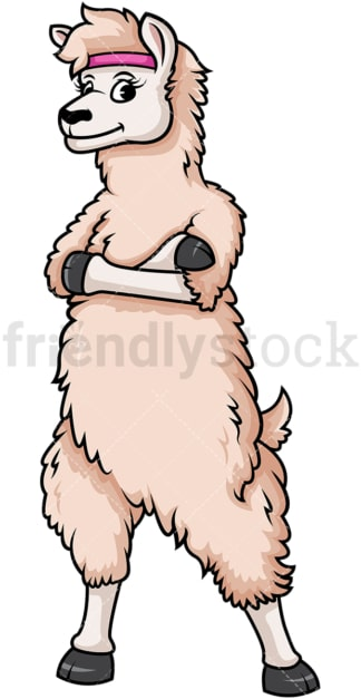 Fit female llama. PNG - JPG and vector EPS (infinitely scalable).