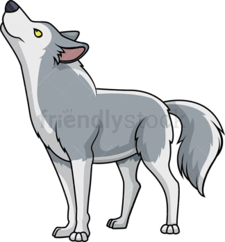 Wolf looking up. PNG - JPG and vector EPS (infinitely scalable).
