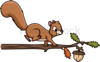Squirrel walking on tree branch. PNG - JPG and vector EPS (infinitely scalable).