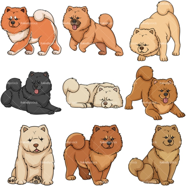 Chow Chow dogs. PNG - JPG and vector EPS file formats (infinitely scalable).