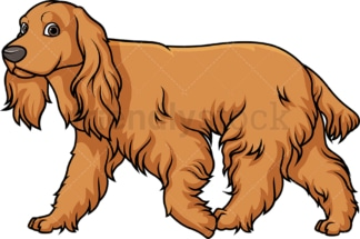 English cocker spaniel walking. PNG - JPG and vector EPS (infinitely scalable).
