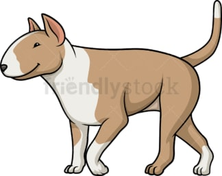 Fawn bull terrier walking. PNG - JPG and vector EPS (infinitely scalable).