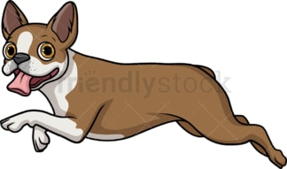 Fawn boston terrier running. PNG - JPG and vector EPS (infinitely scalable).