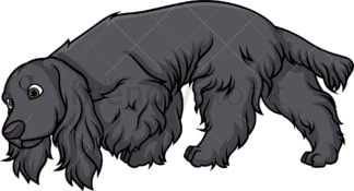 Black english cocker spaniel sniffing. PNG - JPG and vector EPS (infinitely scalable).