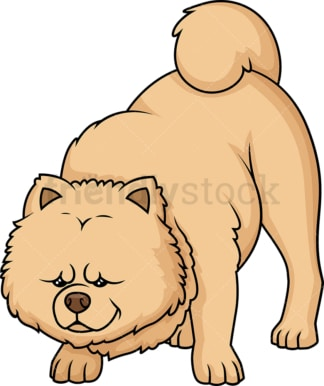 Cinnamon chow chow sniffing. PNG - JPG and vector EPS (infinitely scalable).