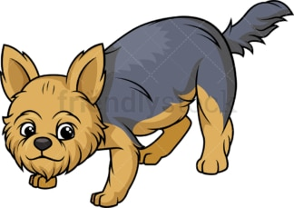 Yorkshire terrier sniffing. PNG - JPG and vector EPS (infinitely scalable).