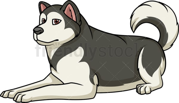 Alaskan malamute lying down. PNG - JPG and vector EPS (infinitely scalable).