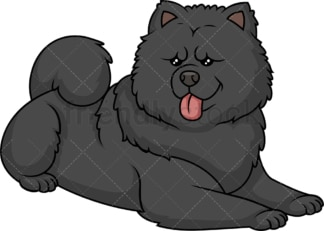 Black chow chow lying down. PNG - JPG and vector EPS (infinitely scalable).