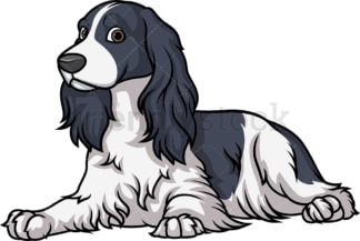 Blue roan english cocker spaniel. PNG - JPG and vector EPS (infinitely scalable).