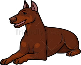 Female red doberman lying down. PNG - JPG and vector EPS (infinitely scalable).