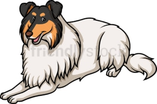 White factored tri collie lying down. PNG - JPG and vector EPS (infinitely scalable).