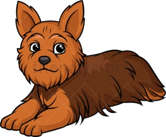 Yorkshire terrier lying down. PNG - JPG and vector EPS (infinitely scalable).