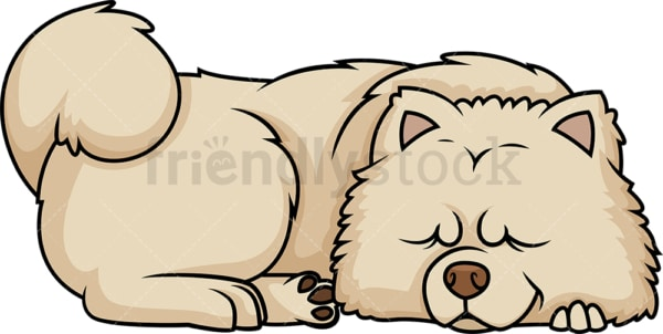 Chow Chow sleeping. PNG - JPG and vector EPS (infinitely scalable).