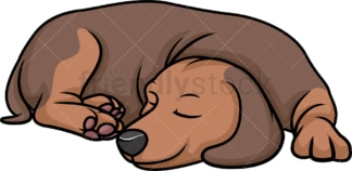 Dachshund sleeping. PNG - JPG and vector EPS (infinitely scalable).