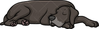 Great dane sleeping. PNG - JPG and vector EPS (infinitely scalable).