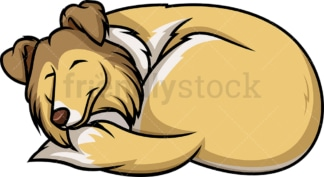 Sable white collie sleeping. PNG - JPG and vector EPS (infinitely scalable).