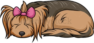 Sleeping female yorkie. PNG - JPG and vector EPS (infinitely scalable).