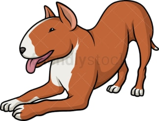 Playful bull terrier. PNG - JPG and vector EPS (infinitely scalable).