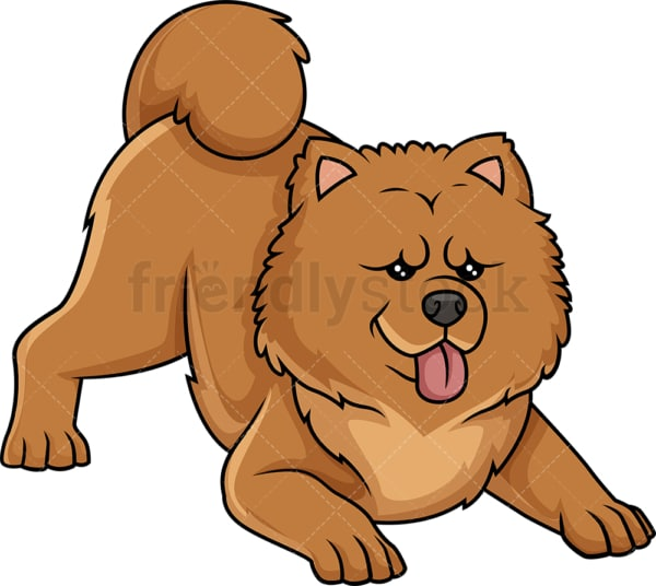 Playful chow chow. PNG - JPG and vector EPS (infinitely scalable).