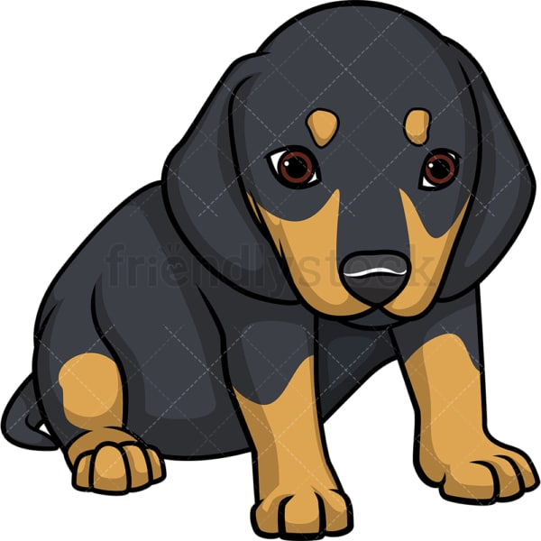 Cute dachshund puppy. PNG - JPG and vector EPS (infinitely scalable).
