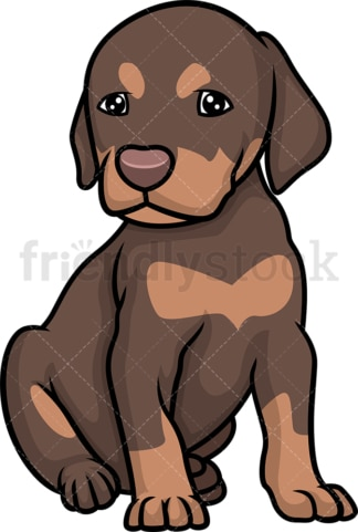 Cute doberman puppy. PNG - JPG and vector EPS (infinitely scalable).
