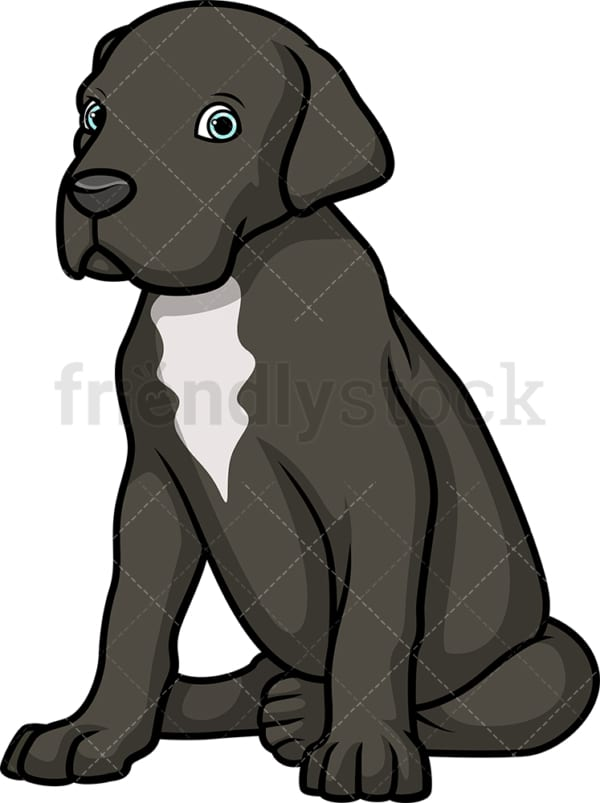Cute great dane puppy. PNG - JPG and vector EPS (infinitely scalable).